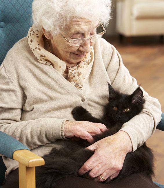 Pets benefit seniors in many ways!